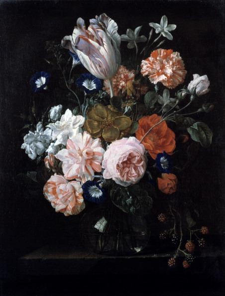 朝顔「'A Tulip, Carnations, and Morning Glory in a Glass Vase', 17th century. Artist: Nicolaes van Veerendael」:写真・画像(11)[壁紙.com]