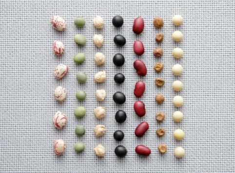 Lentil「Various dried Beans in row」:スマホ壁紙(6)