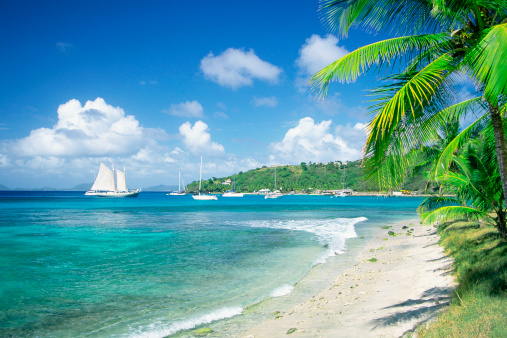 Water's Edge「Caribbean, Grenadines, Britannia Bay, Mustique, View of a beach」:スマホ壁紙(3)