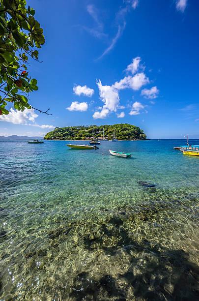 Caribbean, Grenadines, St. Vincent, near Arnos Vale:スマホ壁紙(壁紙.com)