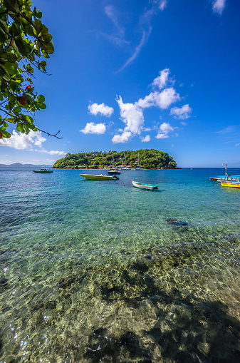 Shallow「Caribbean, Grenadines, St. Vincent, near Arnos Vale」:スマホ壁紙(12)