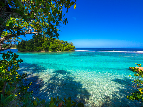Jamaica「Caribbean, Greater Antilles, Jamaica, Portland Parish, Port Antonio, View to Pellew Island」:スマホ壁紙(15)
