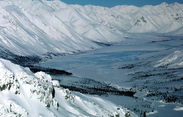 Arctic National Wildlife Refuge「Arctic National Wildlife Refuge Eyed for Oil Drilling」:写真・画像(4)[壁紙.com]