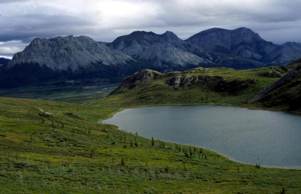 Arctic National Wildlife Refuge「Arctic National Wildlife Refuge Eyed for Oil Drilling」:写真・画像(16)[壁紙.com]