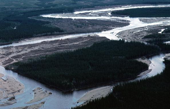Arctic National Wildlife Refuge「Arctic National Wildlife Refuge Eyed for Oil Drilling」:写真・画像(9)[壁紙.com]