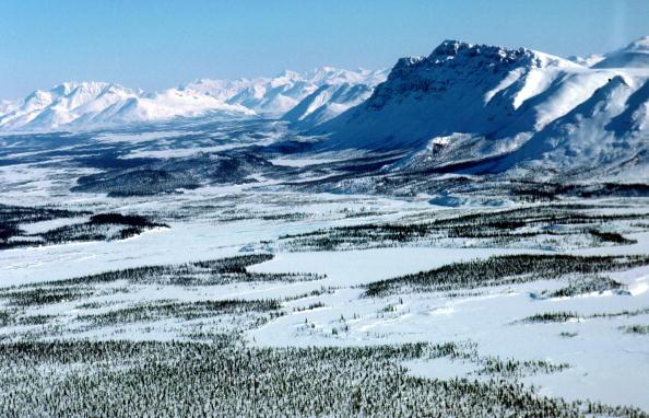 Arctic National Wildlife Refuge「Arctic National Wildlife Refuge Eyed for Oil Drilling」:写真・画像(13)[壁紙.com]