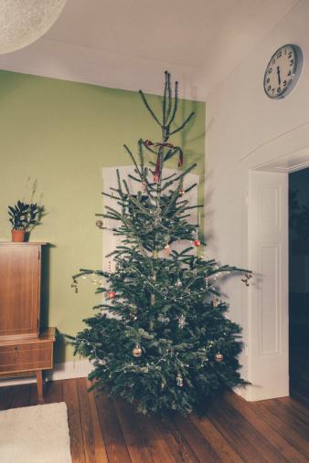 マツ科「Germany, Bonn, decorated christmas tree」:スマホ壁紙(11)