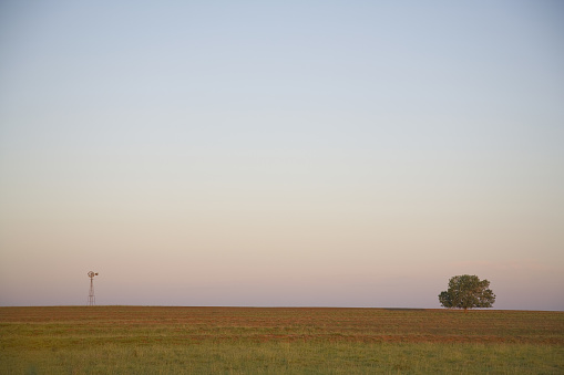 Prairie「Lone Windmill and Tree on Rural Field, Texas, USA」:スマホ壁紙(17)