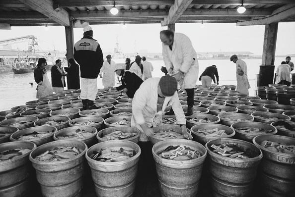 金融と経済「Fish at Lowestoft」:写真・画像(10)[壁紙.com]