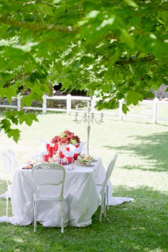 Formal Garden「Formal meal in garden」:スマホ壁紙(8)