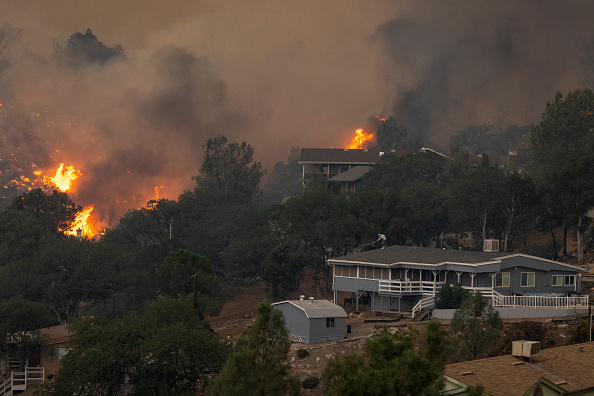 Sequoia National Forest「French Fire In California Burns Almost 15,000 Acres」:写真・画像(8)[壁紙.com]