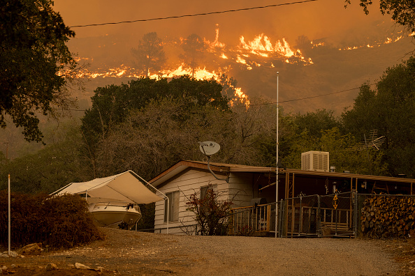 Sequoia National Forest「French Fire In California Burns Almost 15,000 Acres」:写真・画像(13)[壁紙.com]