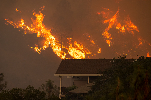 Sequoia National Forest「French Fire In California Burns Almost 15,000 Acres」:写真・画像(9)[壁紙.com]
