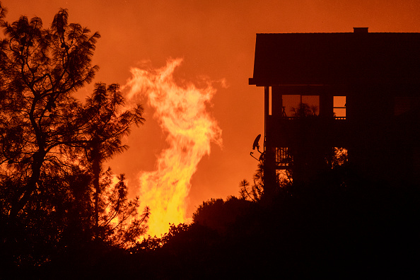 Sequoia National Forest「French Fire In California Burns Almost 15,000 Acres」:写真・画像(18)[壁紙.com]
