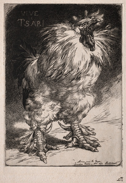 Etching「The French Cock」:写真・画像(1)[壁紙.com]
