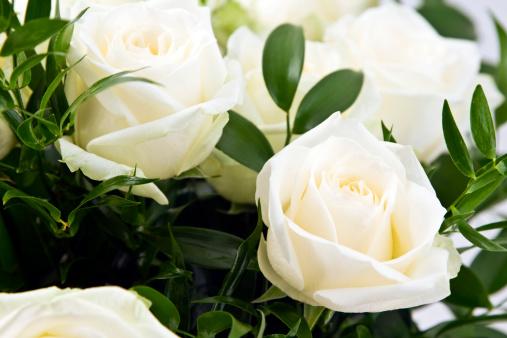 薔薇「ブーケのホワイトローズ」:スマホ壁紙(11)