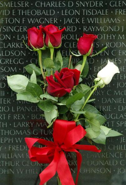 Monument「Vietnam Veterans Memorial 20th Anniversay」:写真・画像(16)[壁紙.com]