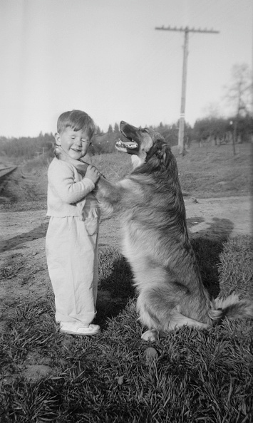 Positioning「Boy With Pet Dog」:写真・画像(6)[壁紙.com]