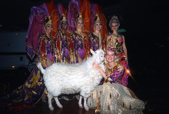 Ringling Brothers and Barnum & Bailey Circus「Living Unicorn」:写真・画像(2)[壁紙.com]