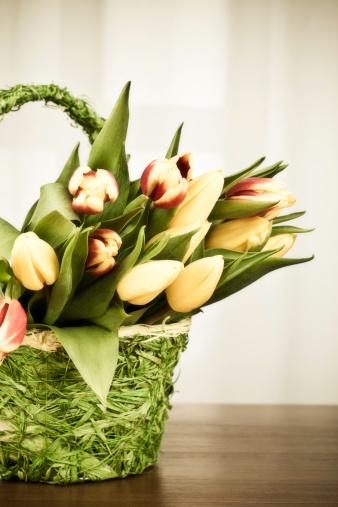 Easter Basket「Easter Basket」:スマホ壁紙(9)