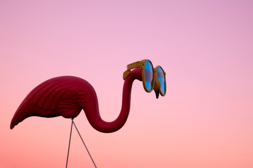 Kitsch「Plastic Pink Flamingo on a Lawn at Sunset」:スマホ壁紙(19)