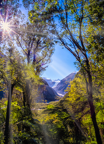 Fox Glacier「Fox Glacier On New Zealand's South Island」:スマホ壁紙(12)