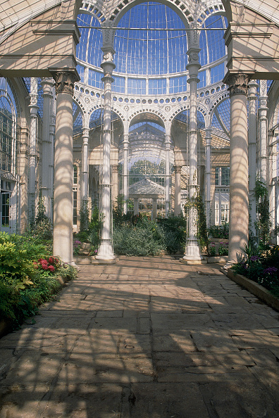 2002「Syon Park conservatory, greenhouses and gardens. London, United Kingdom.」:写真・画像(6)[壁紙.com]