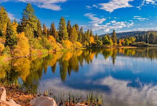 Oak Woodland「San Bernardino County with autumn foliage at Grass Valley Lake , Ca (P)」:スマホ壁紙(13)