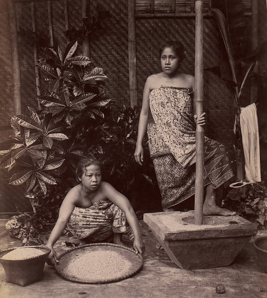 Mortar and Pestle「Javanese Women Preparing Rice」:写真・画像(11)[壁紙.com]