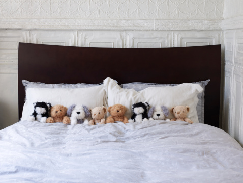 子供時代「Eight Stuffed Animals In A Bed Together」:スマホ壁紙(11)