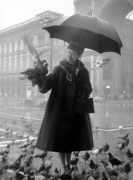 Umbrella「Fonteyn In Milan」:写真・画像(16)[壁紙.com]