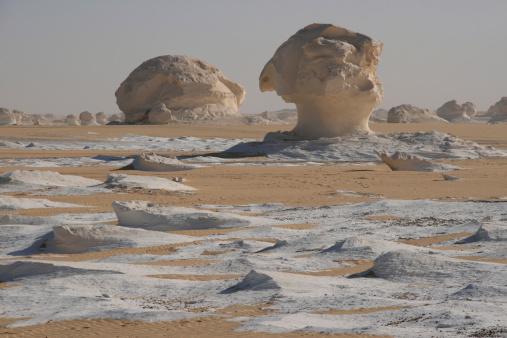 Alien「Chalk mushrooms in the White Desert」:スマホ壁紙(9)