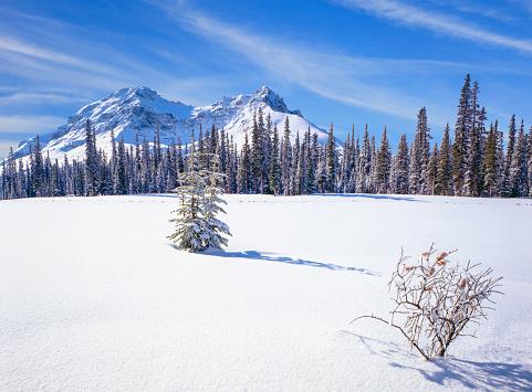 Canadian Rockies「Winter in the Canadian Rockies」:スマホ壁紙(12)