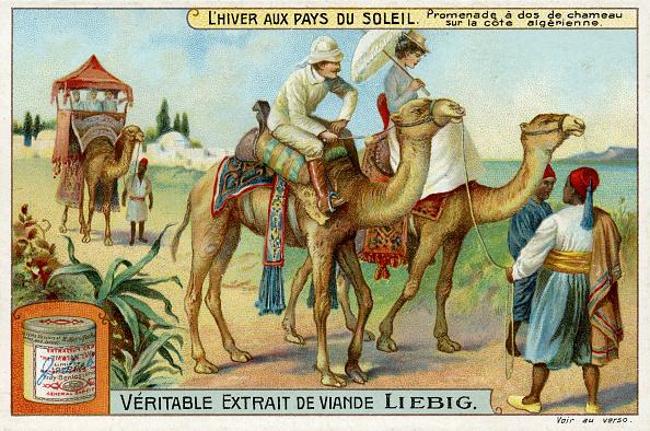 1910-1919「Winter in the Sun: Camel ride on the Algerian coast」:写真・画像(14)[壁紙.com]