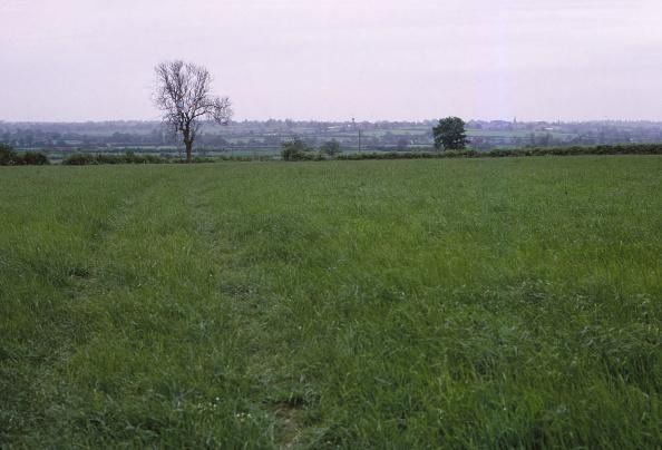Earl King「Bosworth Field」:写真・画像(6)[壁紙.com]