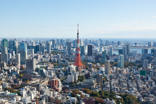 Tokyo Tower「Downtown skyline with Tokyo Tower」:スマホ壁紙(12)