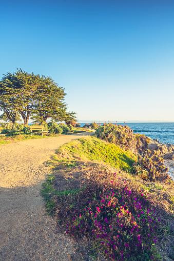 California State Route 1「scenic carmel beach of Carmel-by-the-Sea,California」:スマホ壁紙(10)