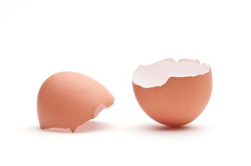 Life Cycle「Egg shell」:スマホ壁紙(3)
