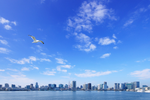 Shinagawa-ku「Cityscape of Tokyo, Shinagawa Ward, Koto Ward, Tokyo Prefecture, Honshu, Japan」:スマホ壁紙(5)