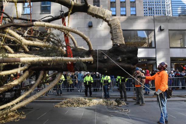 Bestpix「Rockefeller Center Christmas Tree Arrives In New York City」:写真・画像(16)[壁紙.com]