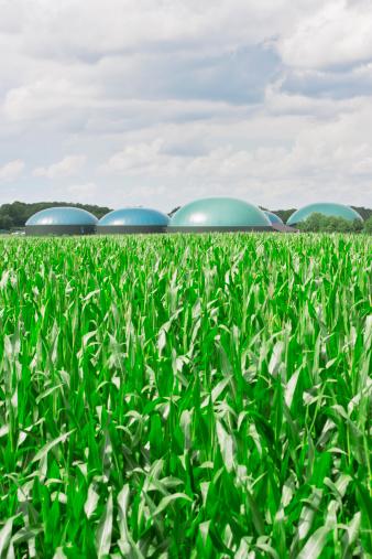 Biomass - Ecological Concept「Biogas energy」:スマホ壁紙(16)