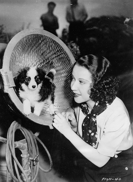 Ethel Merman「Ethel Merman. US-american actress in a scene of the film WE ARE NOT DRESSING. With dog TOOTS. Hollywood. 1934. Photograph. (Photo by Imagno/Getty Images) Ethel Merman. US-amerikanische Schauspielerin in einer Szene des Films WE ARE NOT DRESSING. Mit Hund T」:写真・画像(1)[壁紙.com]