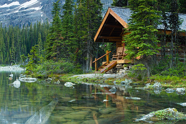 Log cabin hidden in the trees by the Lake Ohara in Canada:スマホ壁紙(壁紙.com)