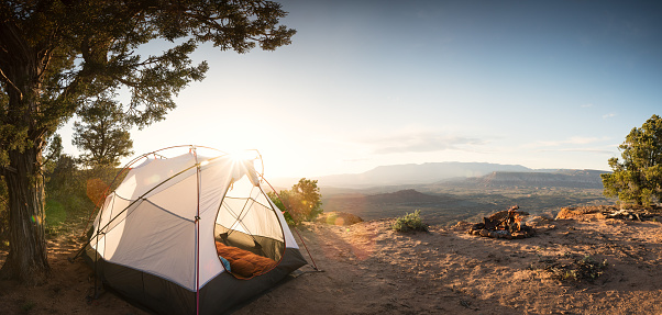 Tent「Tent Camping Under a Pinon Tree in the Desert, First Morning Light and a Campfire」:スマホ壁紙(5)