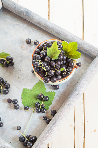 Black currant「Bowl of black currants with leaves on a tray」:スマホ壁紙(15)