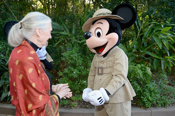 ミニーマウス「Walt Disney World Awaken Summer - Media Preview」:写真・画像(16)[壁紙.com]