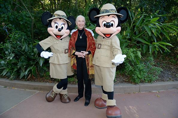 ミニーマウス「Walt Disney World Awaken Summer - Media Preview」:写真・画像(6)[壁紙.com]