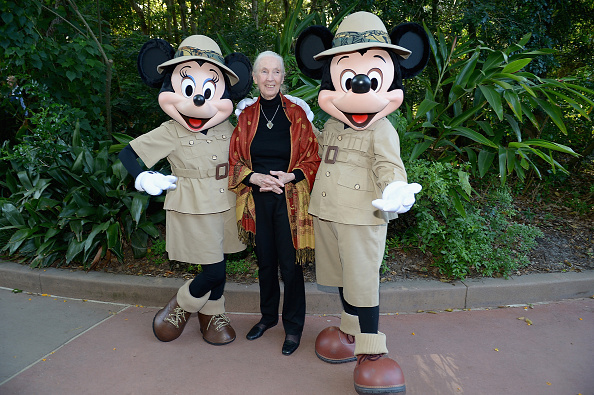 Mickey Mouse「Walt Disney World Awaken Summer - Media Preview」:写真・画像(0)[壁紙.com]