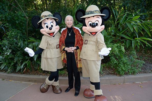 ミニーマウス「Walt Disney World Awaken Summer - Media Preview」:写真・画像(3)[壁紙.com]