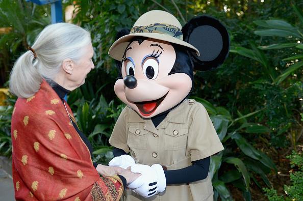ミニーマウス「Walt Disney World Awaken Summer - Media Preview」:写真・画像(16)[壁紙.com]